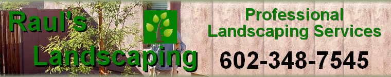 Coupons Special Offers - Raul's Professional Landscaping Services - Anthem, Cave Creek, Scottsdale, Phoenix, AZ