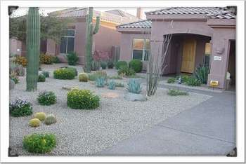 Landscape design and maintenance.